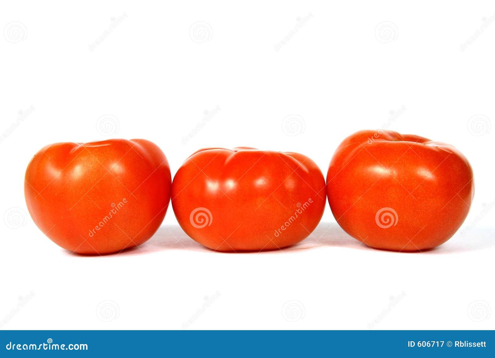 Groep van 3 Tomaten