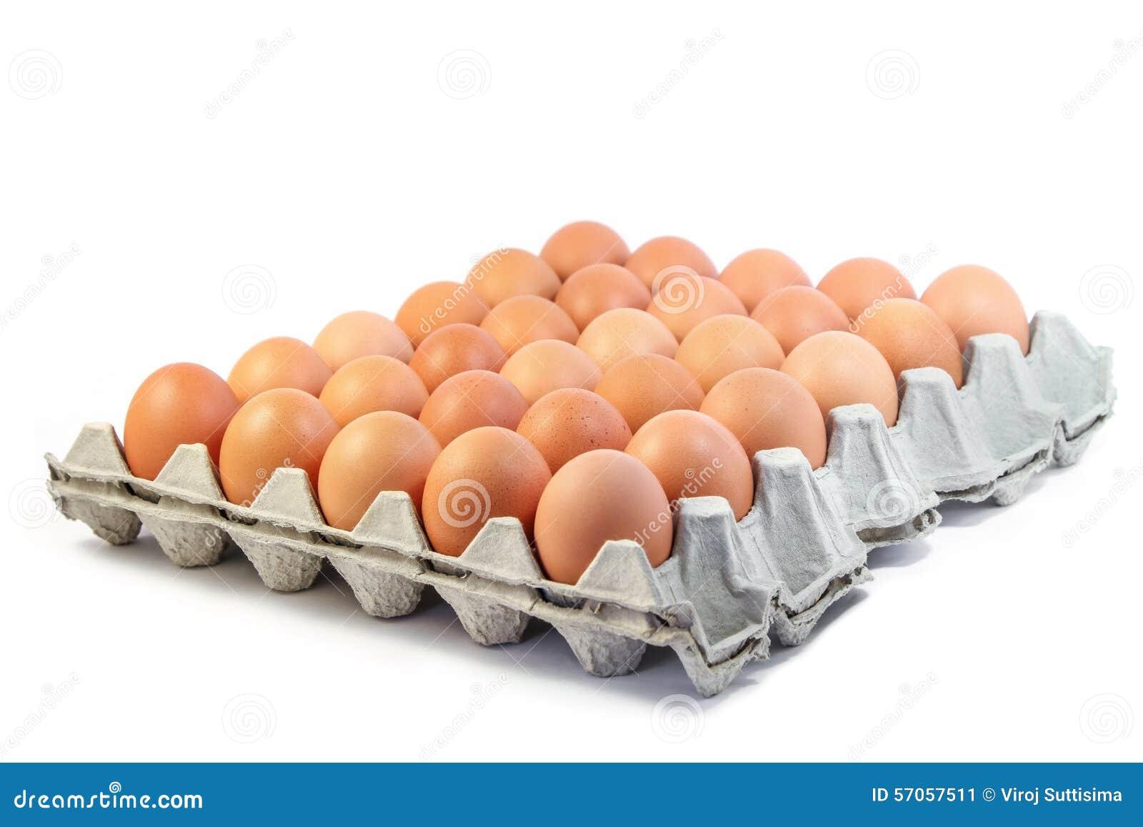 Groep verse eieren in document dienblad op witte achtergrond