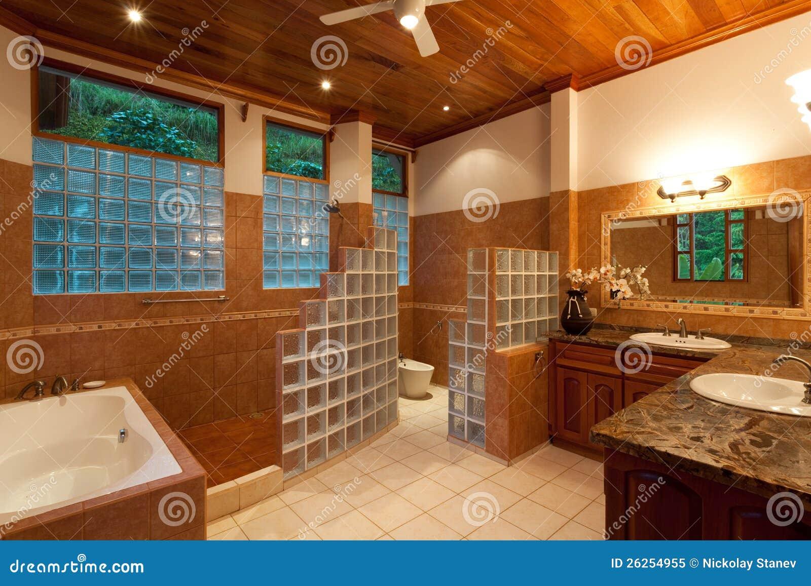 gro es modernes badezimmer lizenzfreies stockfoto bild. Black Bedroom Furniture Sets. Home Design Ideas