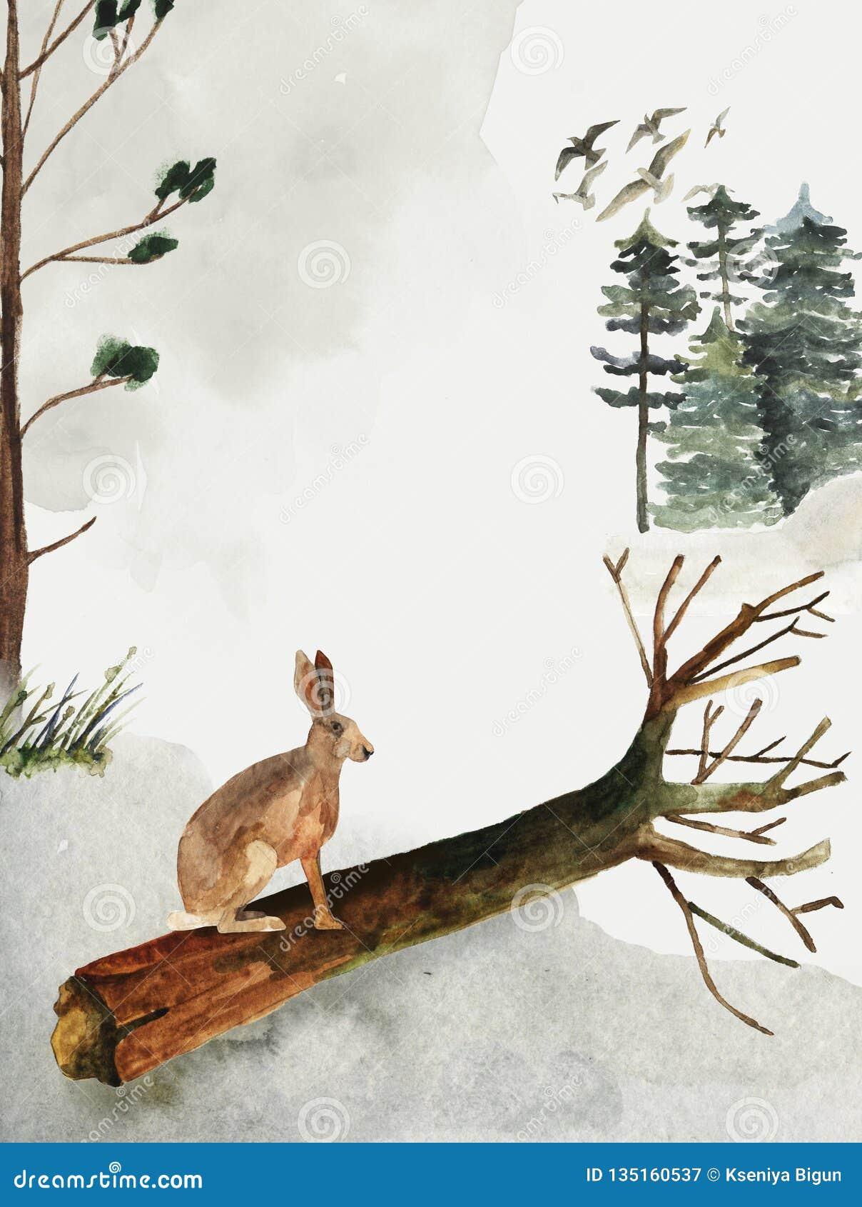 Groetkaart met achtergrond van bos en bergen Kinderen` s Thema Prentbriefkaar met een haas wildlife