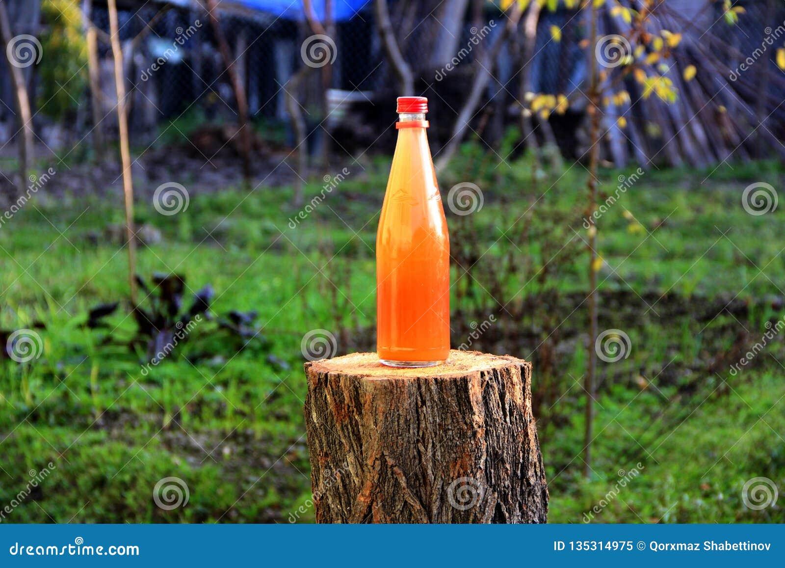Gronowej zalewa napoju butelki naturalna zieleń