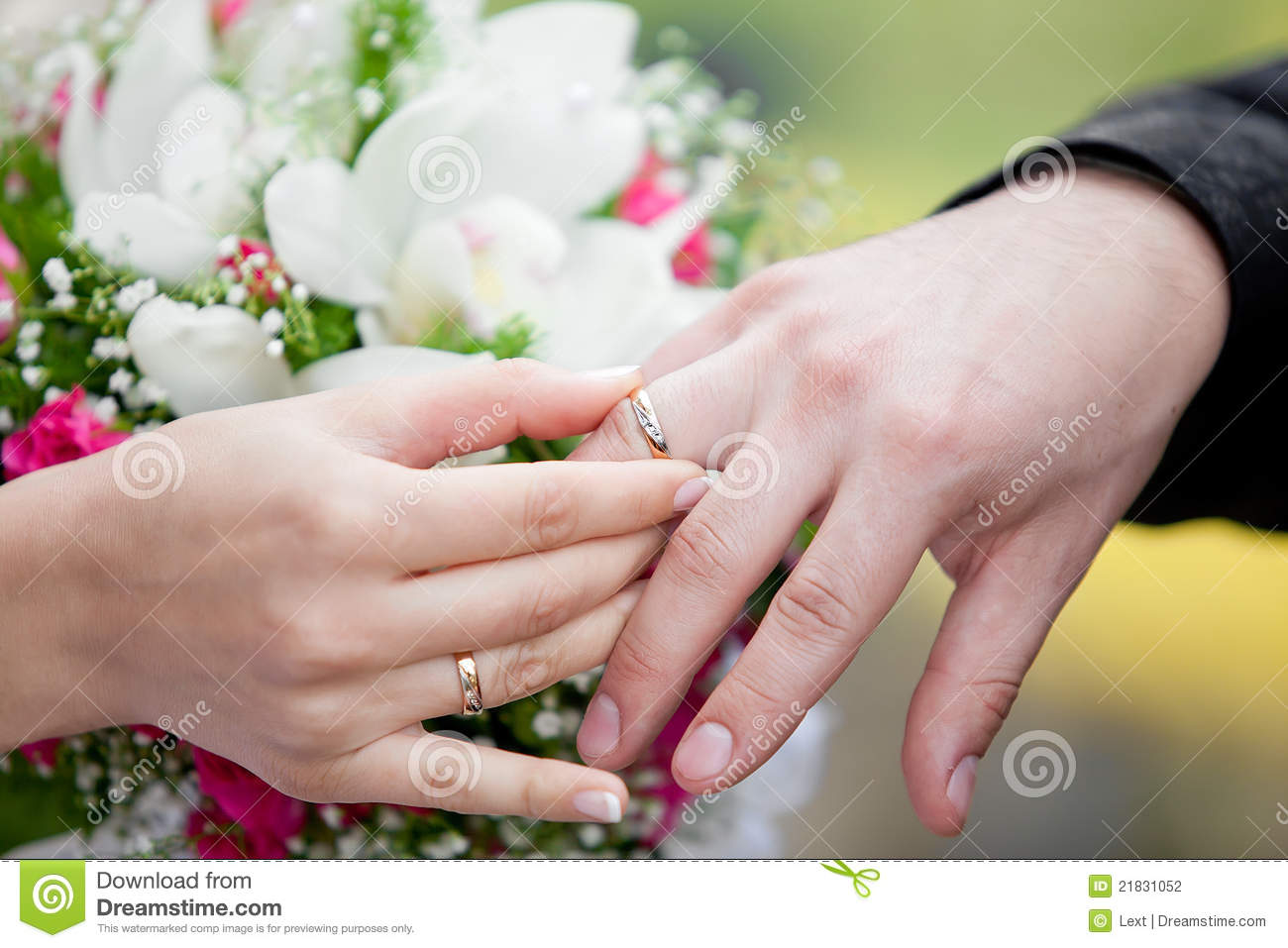 The Groom And The Bride Exchange Wedding Rings Stock Photo Image