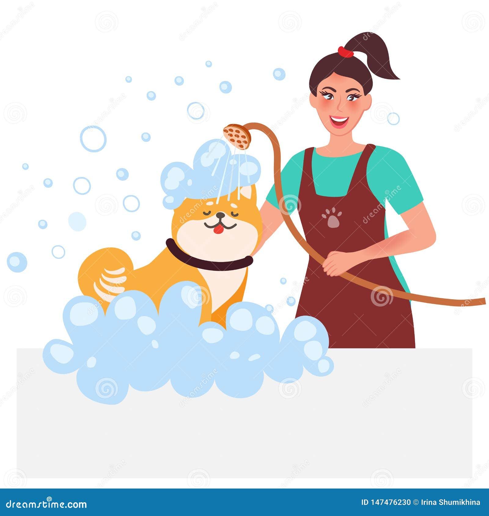 Groomer principal Chiens de lavage Soin et entretien professionnels des animaux familiers