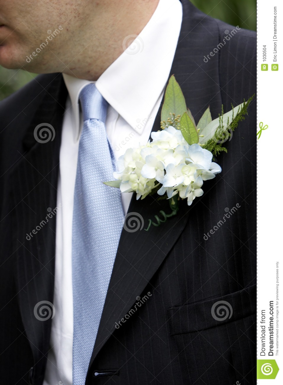 Grooms Corsage Stock Photo. Image Of Dress, Cute, Fashion