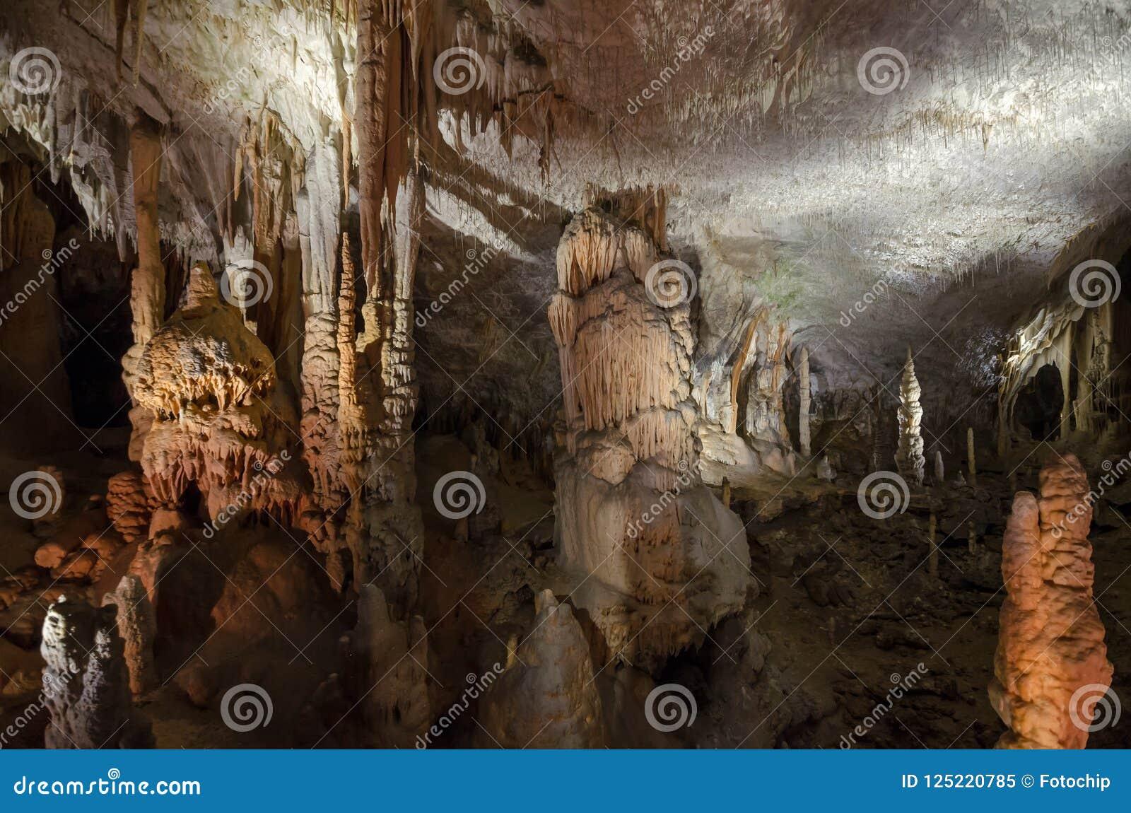 Groot hol met stalactieten, stalagmieten en stalagnates in Postojna-hol, Slovenië, Europa