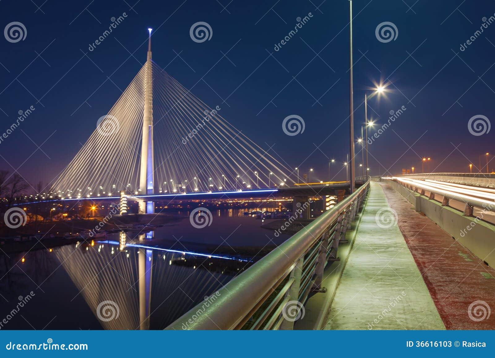 Grootste brug met één pyloon