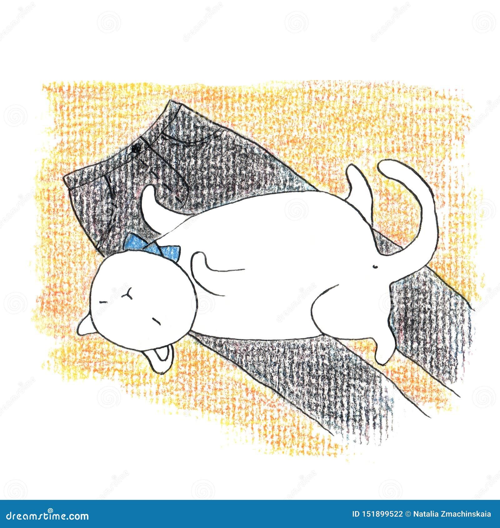 Gros chat blanc drôle se trouvant sur les pantalons noirs