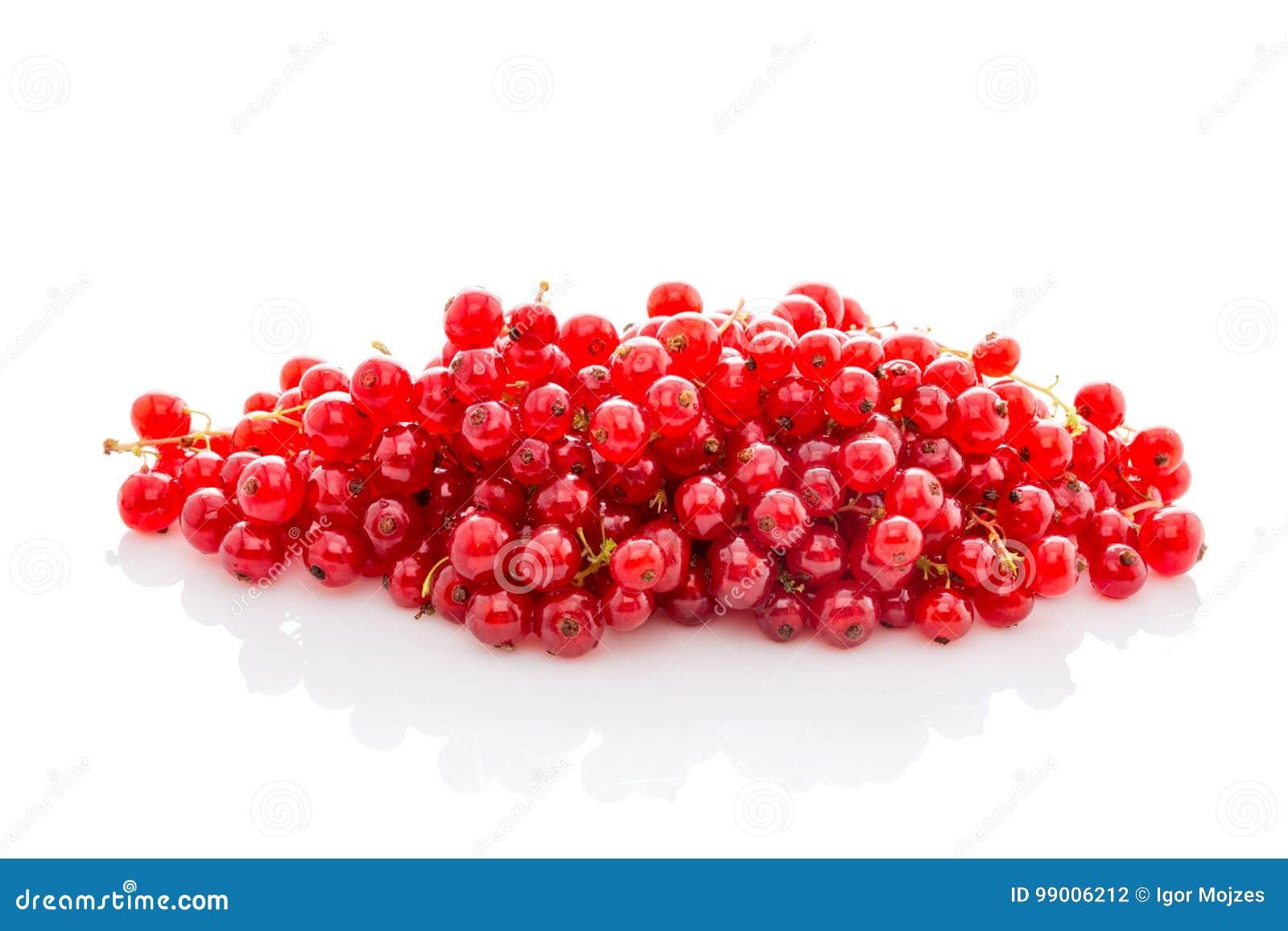 Groseille rouge mûre de groupe d isolement sur le blanc