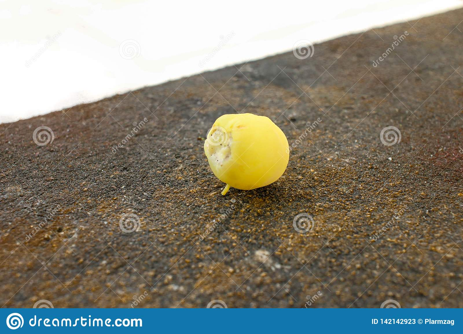 Groselha da estrela no fruto