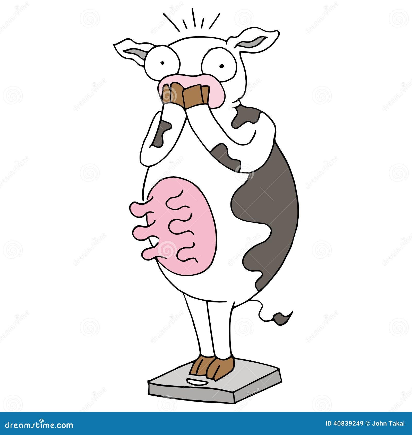 Grosse vache