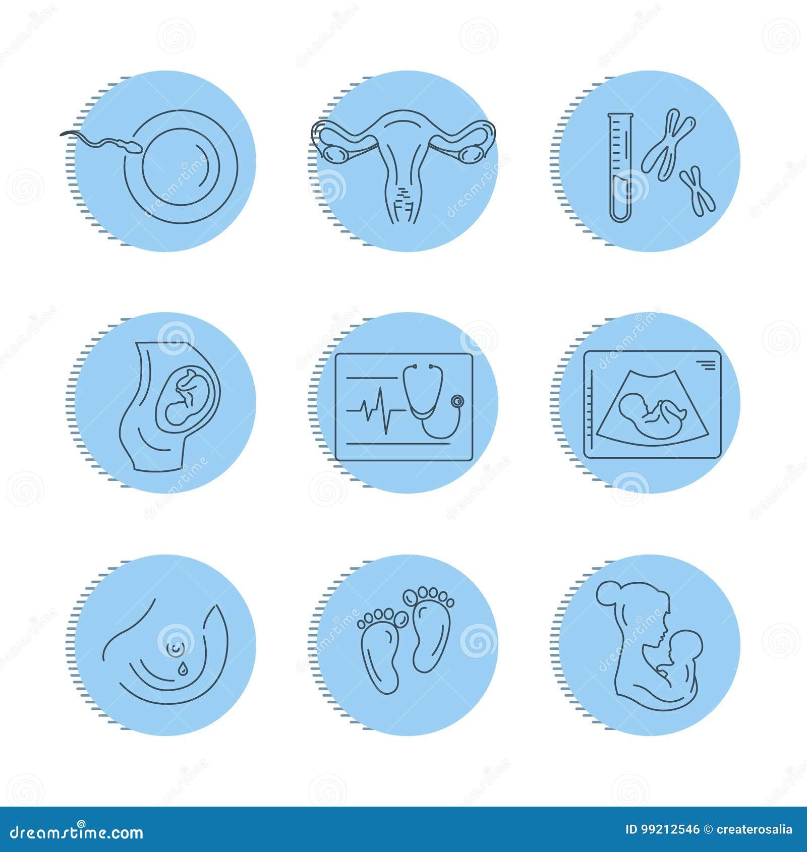 Grossesse et accouchement Ligne icônes de vecteur