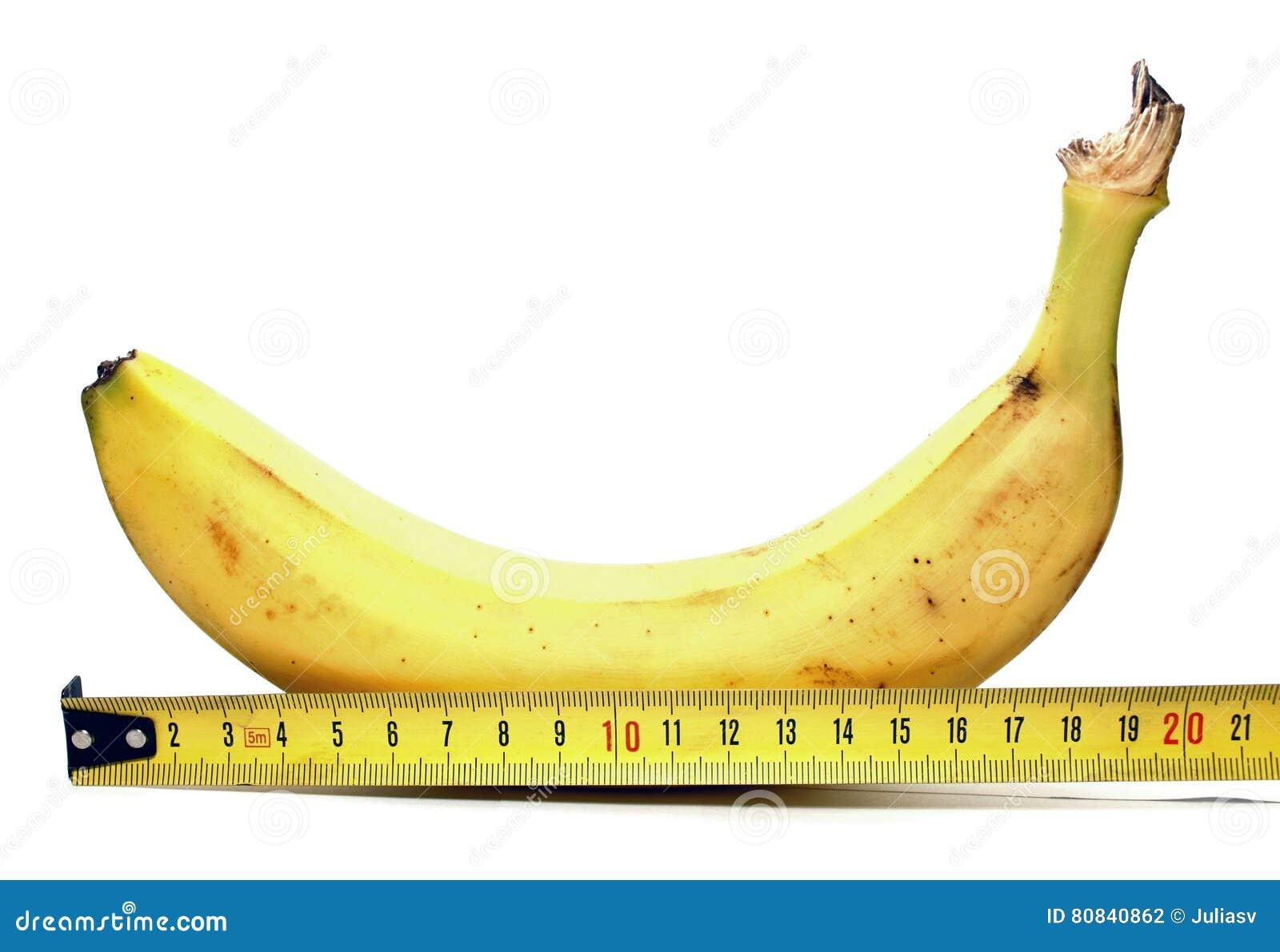 Wat is de grootte van een grote penis