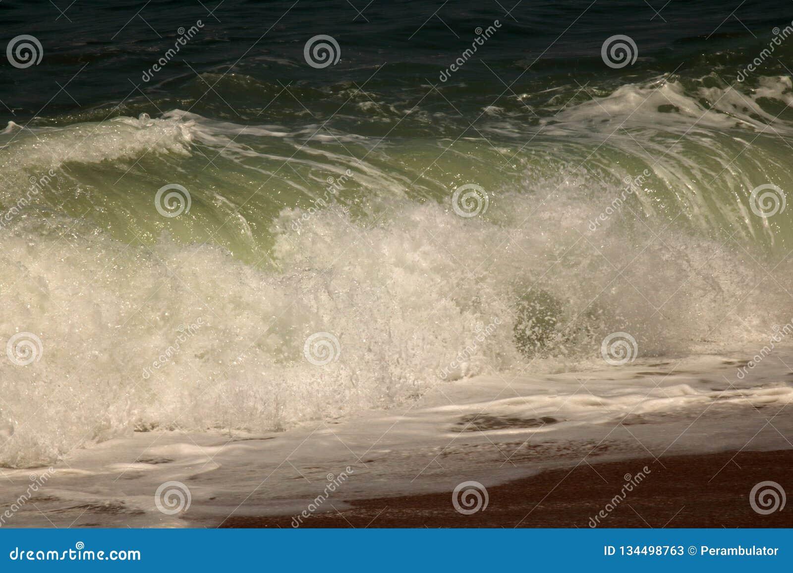 Grote golf die op de kust verpletteren