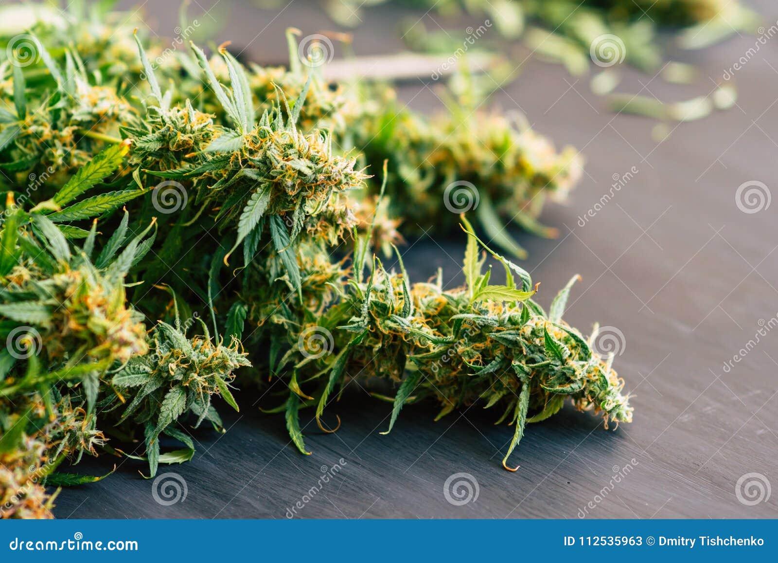 Grote knoppen van verse cannabis op een zwarte achtergrond van een houten lijst