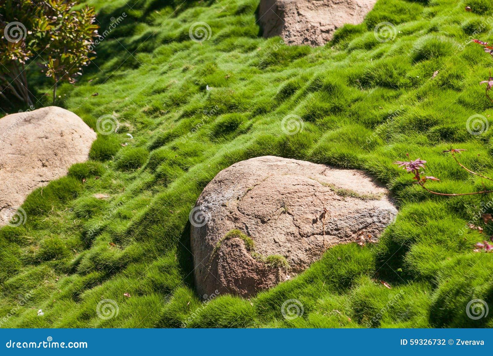 Grote steen op groen gras bij de tuin stock foto afbeelding 59326732 - Tuin decoratie buitenkant ...