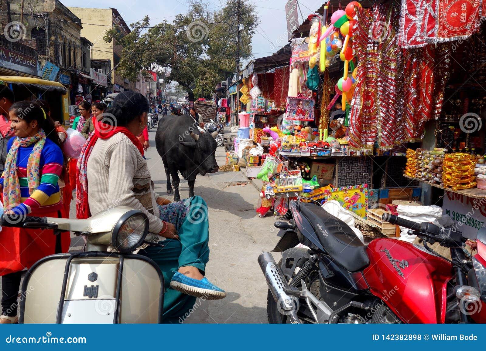 Grote Stier in Rishikesh-Markt