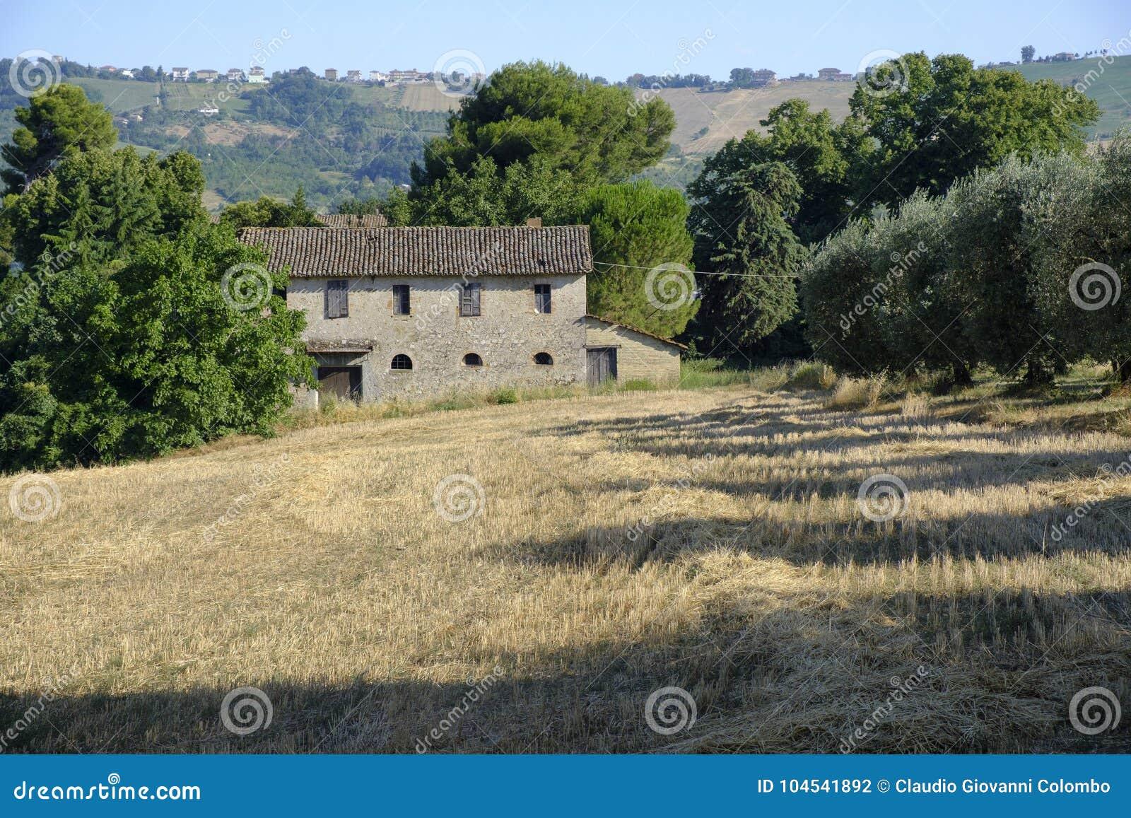 Case Di Campagna Marche : Grottammare ascoli piceno marche italia vecchia casa di