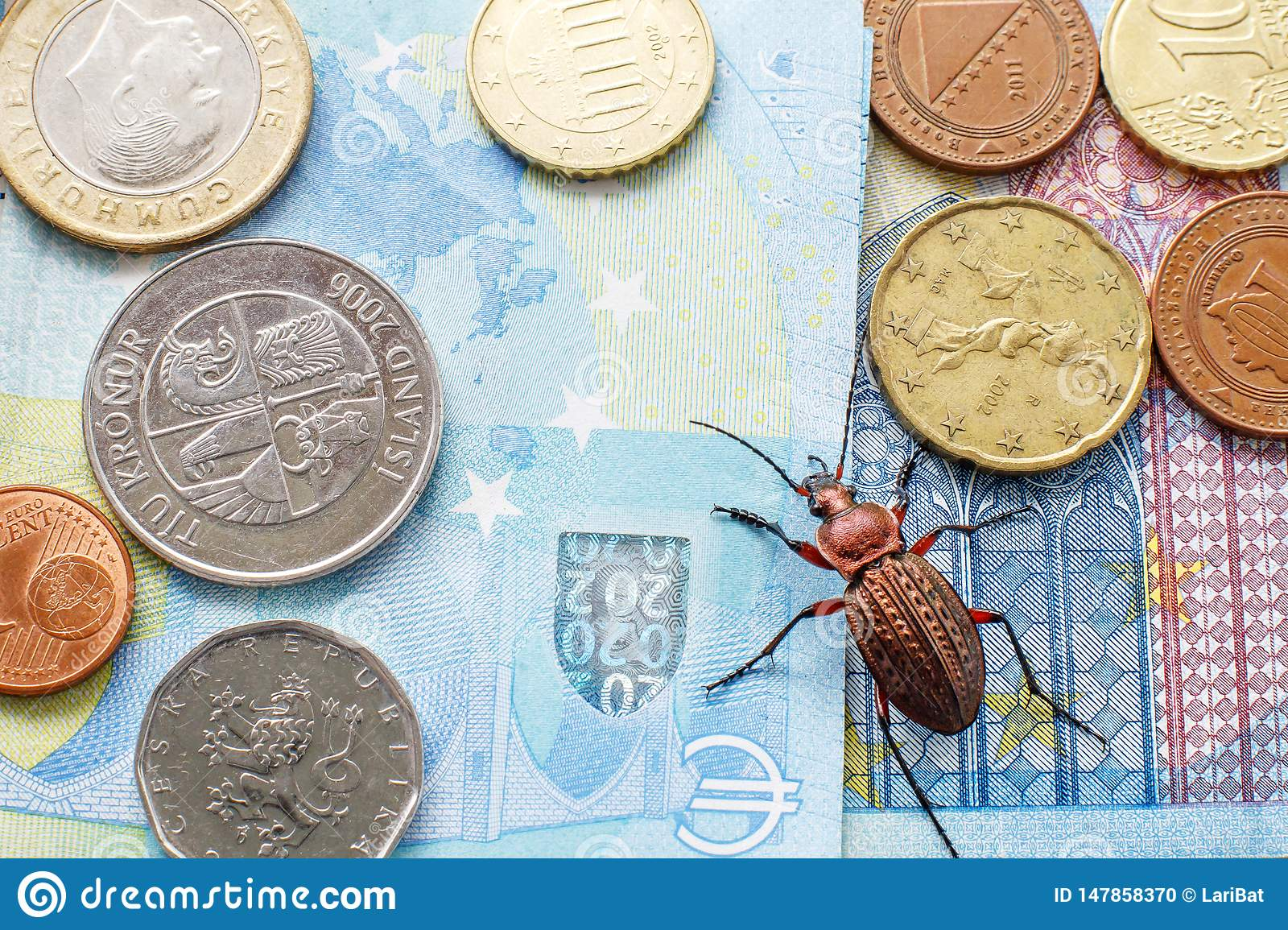 Ground beetle on the bill twenty euros, small coins of Europe. Concept: money beetle