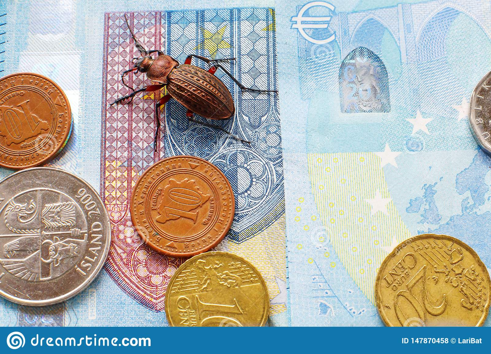 Ground beetle on the bill twenty euros, small coins of Europe