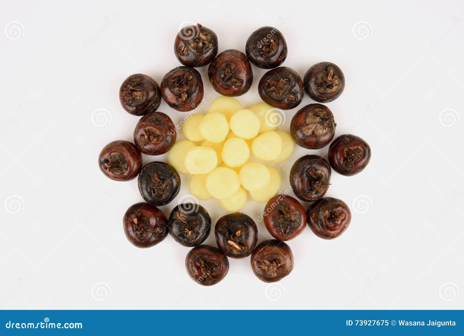 Ground Chesnut, Chinese Water Chestnuts: Fruit Native Of