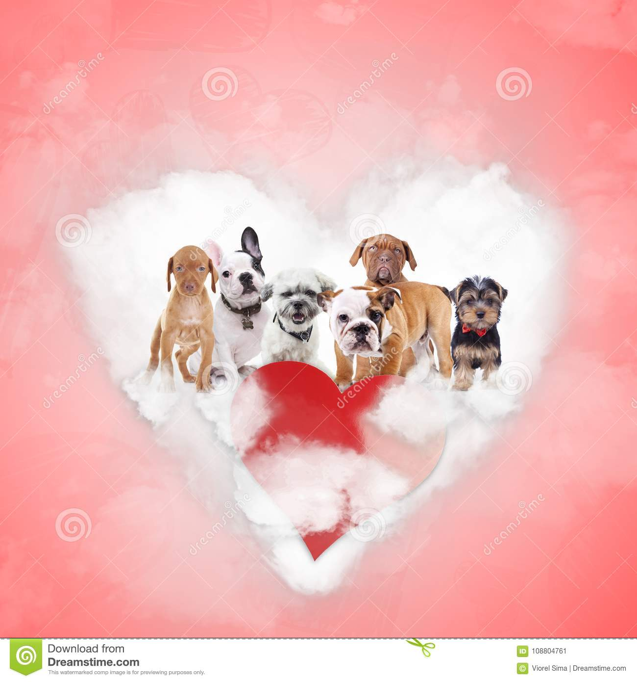 Group of adorable puppies celebrating valentine`s day