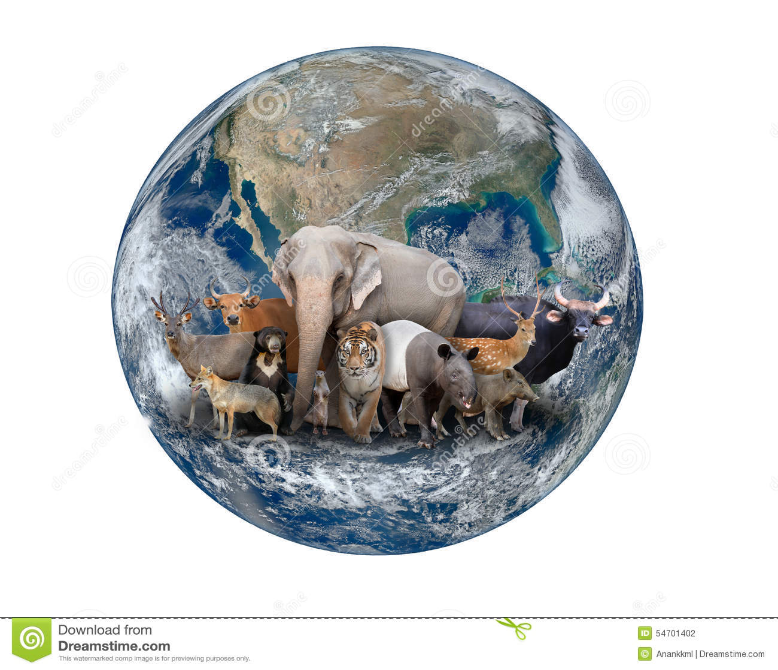 planet earth animals - photo #3