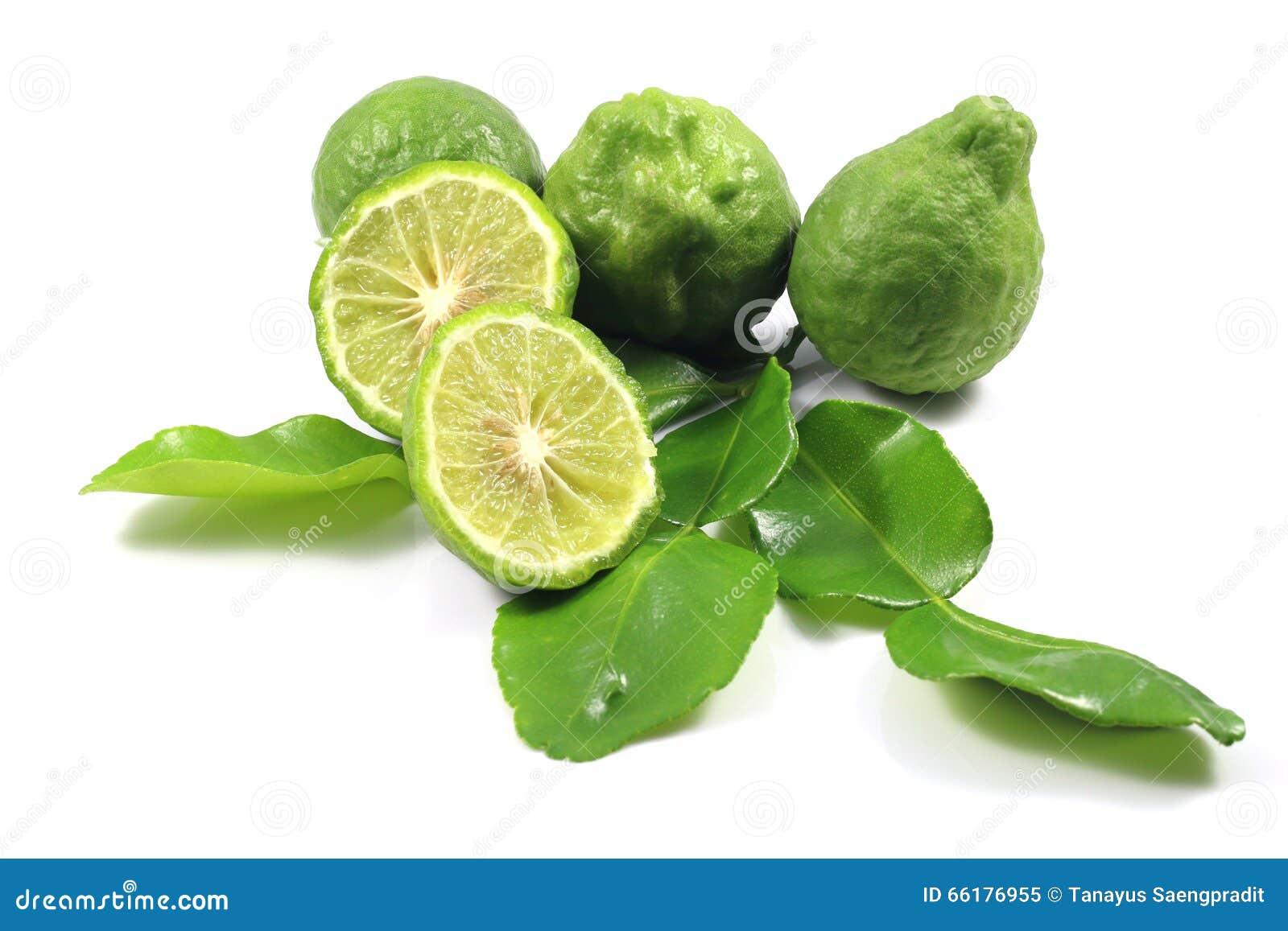 Group of bergamot and leaf