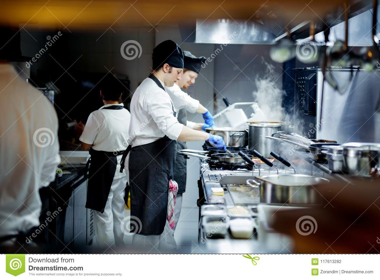 Group Of Chef Preparing Food In The Kitchen Of A Restaurant Stock Photo Image Of Metal Instrument 117613282
