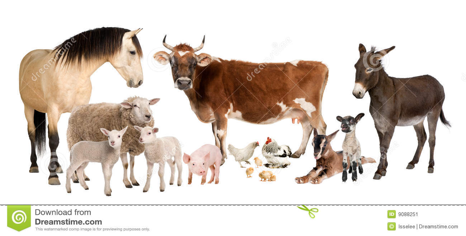 Human female livestock adult download