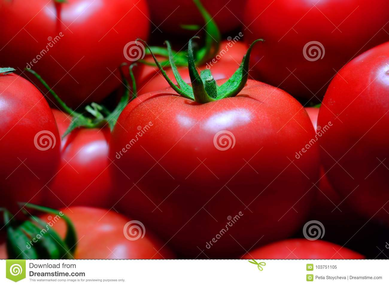 Group of Fresh red tomatoes, closeup