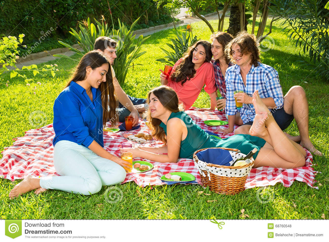 Group Of Friends Having Picnic On A Sunny Day Stock Photo
