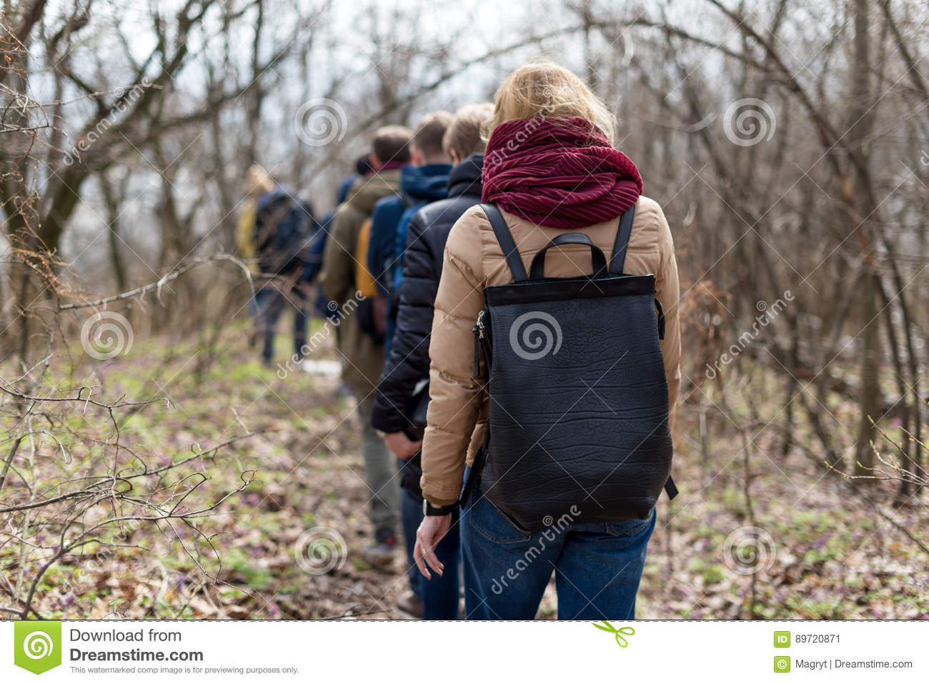 Group of friends walking with backpacks in spring forest from back. Backpackers hiking in the woods. Adventure, travel