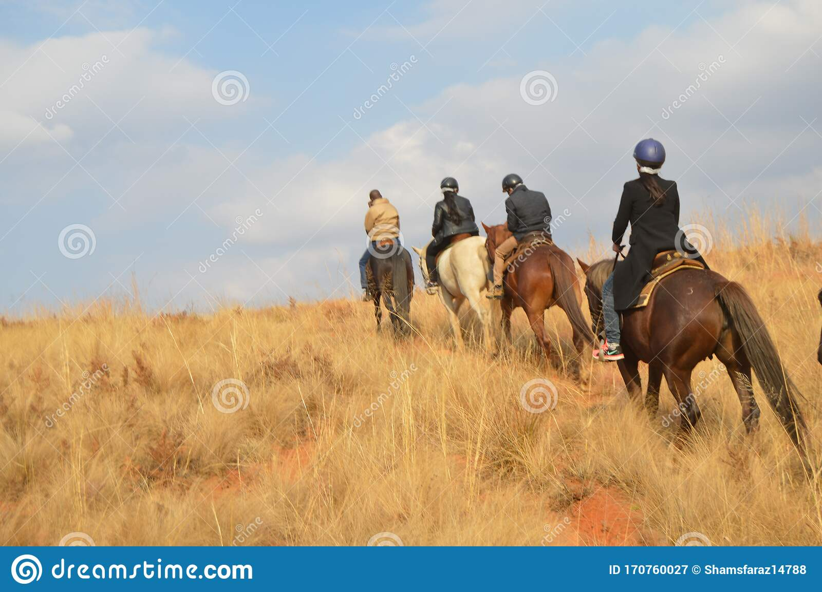 Group Of Indian Horse Riding Riders On A Trail In Drakensberg Region In South Africa Editorial Photography Image Of Group Horseback 170760027