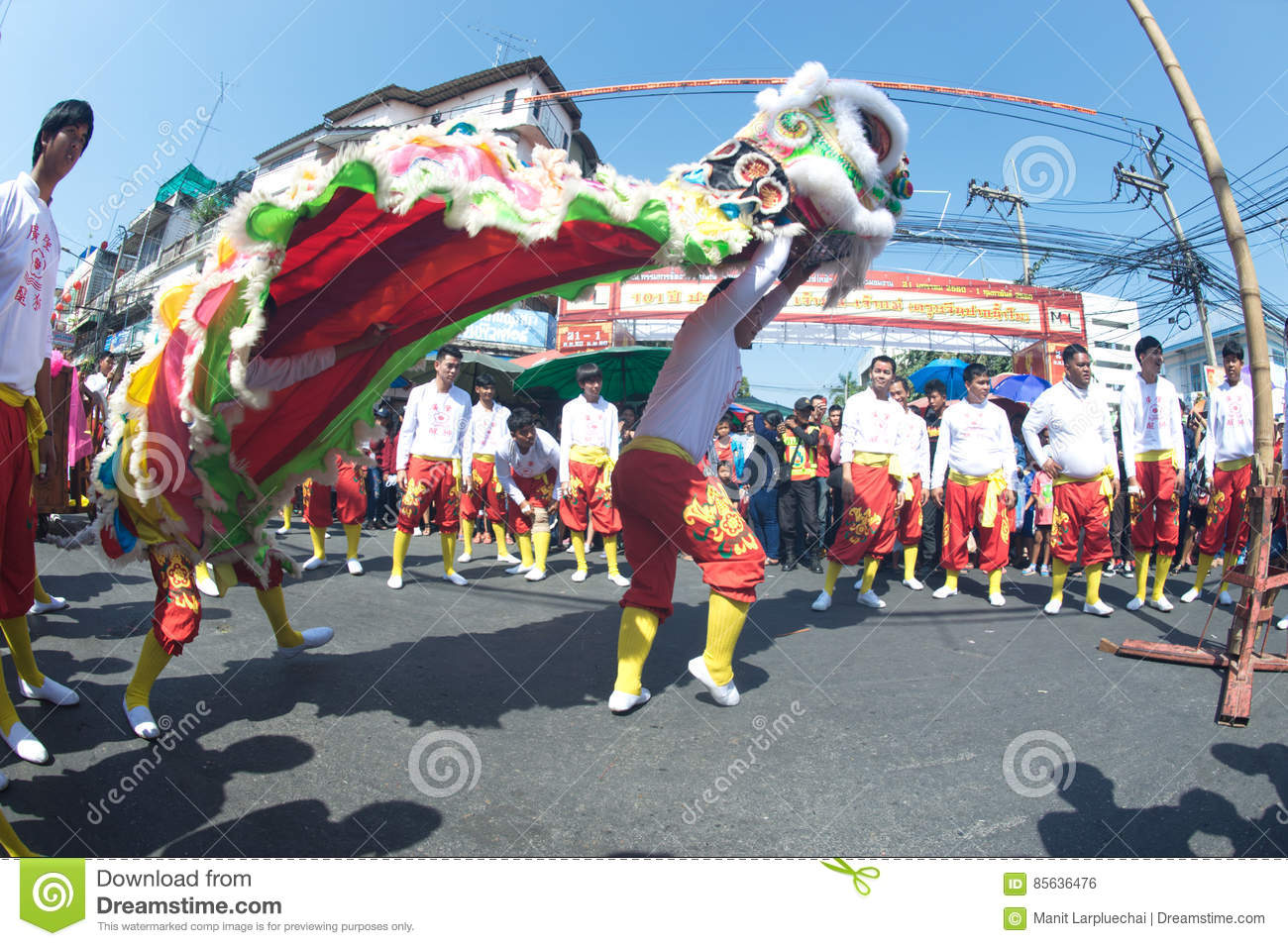 Group of Lion dancing performers during the celebration.