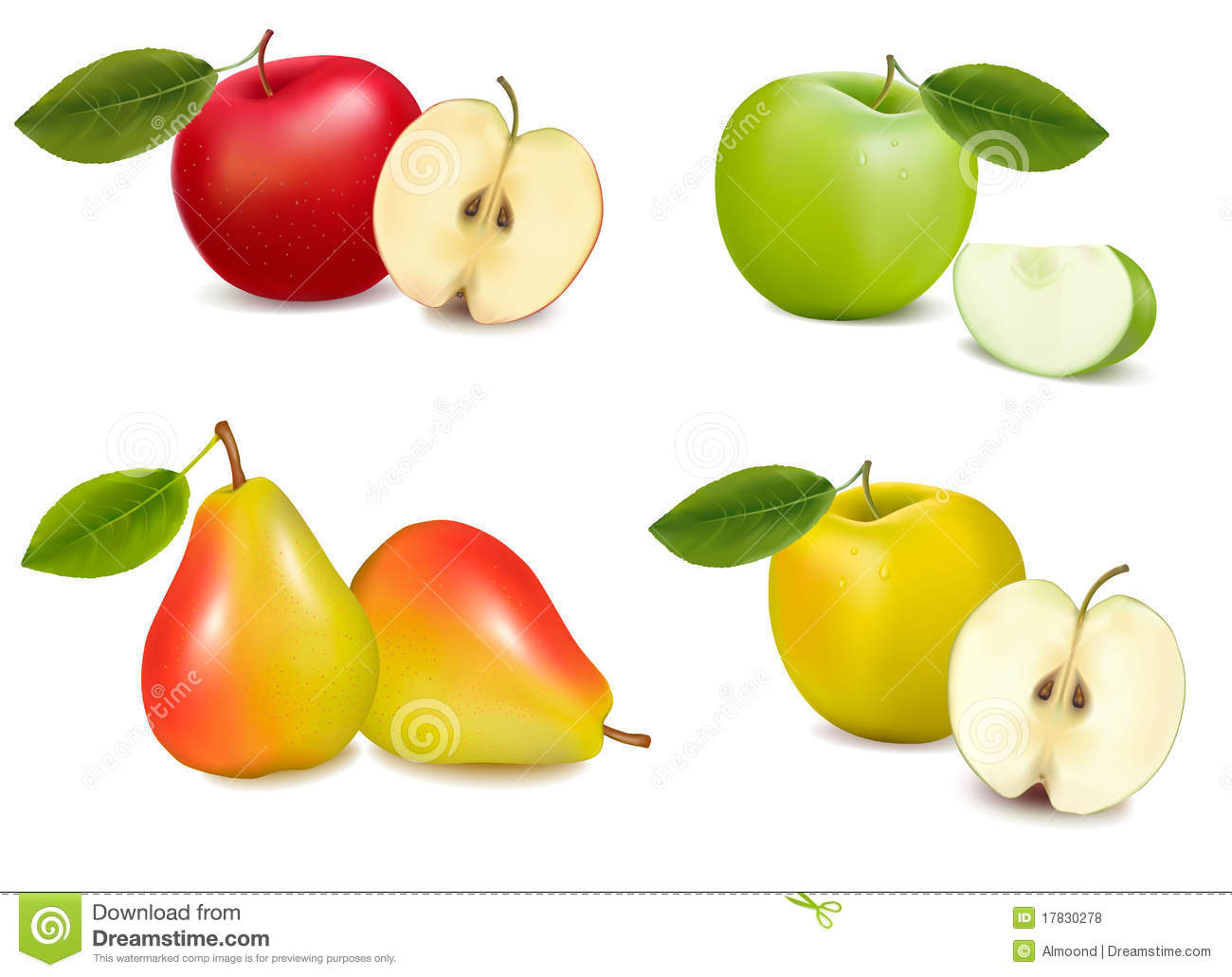Group of pears and apples. Vector