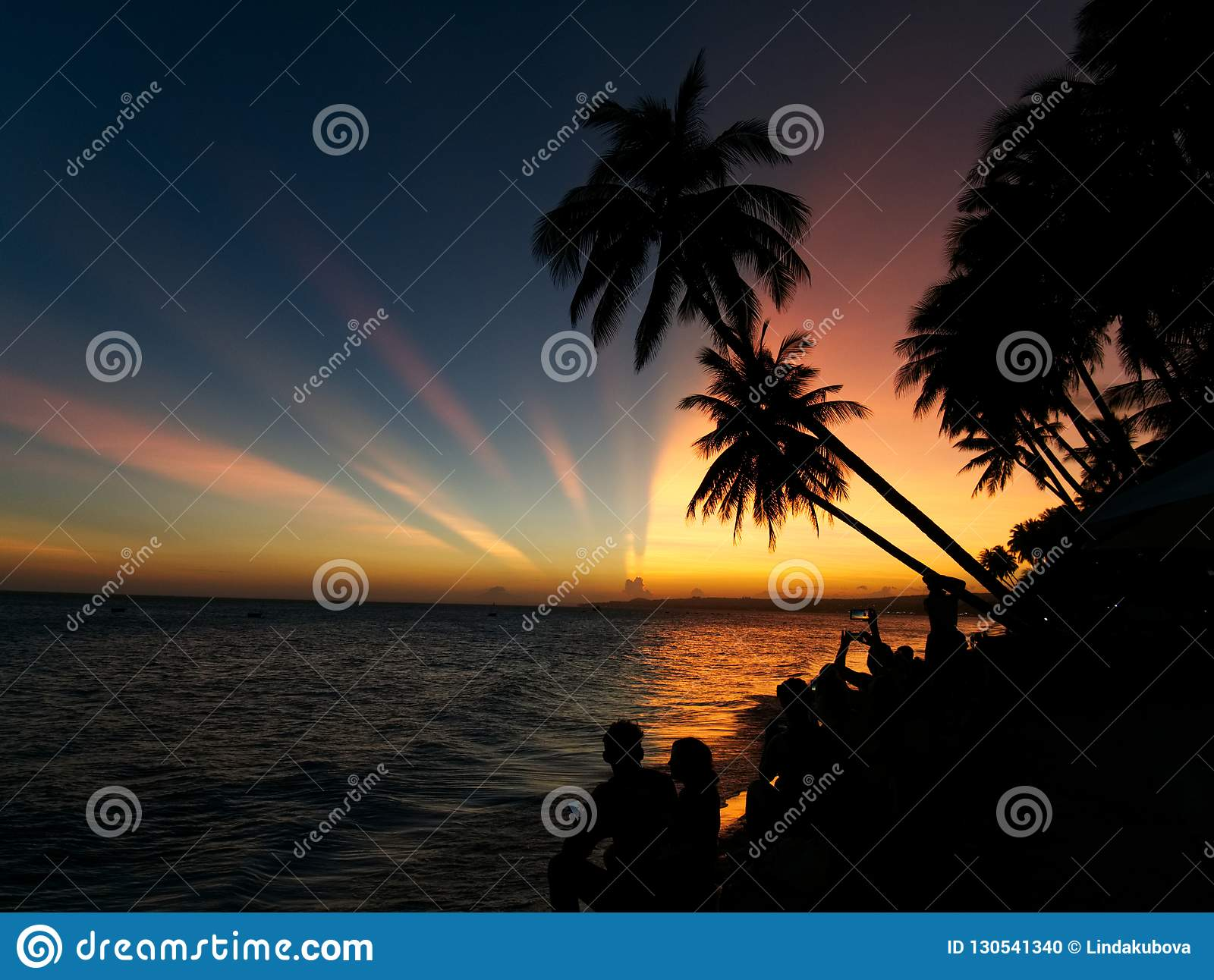 A group of people watching the sunset with palm trees