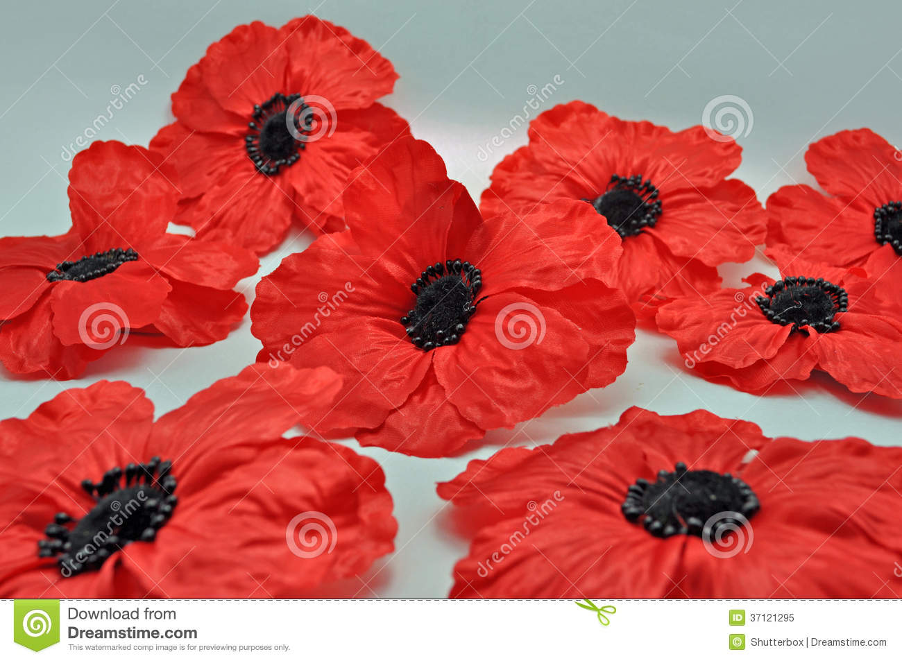 Group Of Red Poppy Brooch Jewellery Stock Image - Image of luxury