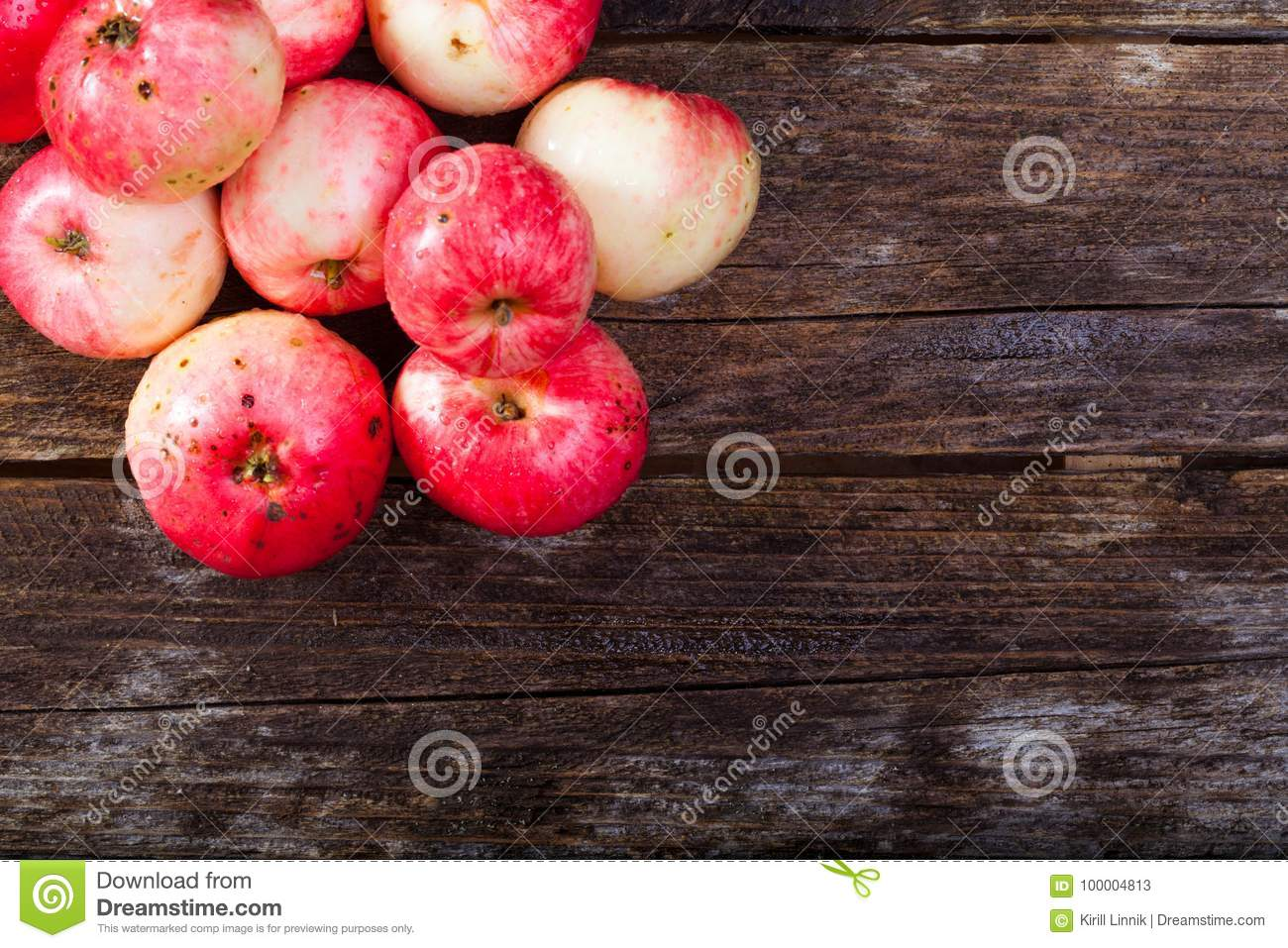Download Red ripe apples stock image. Image of retro, freshness - 100004813