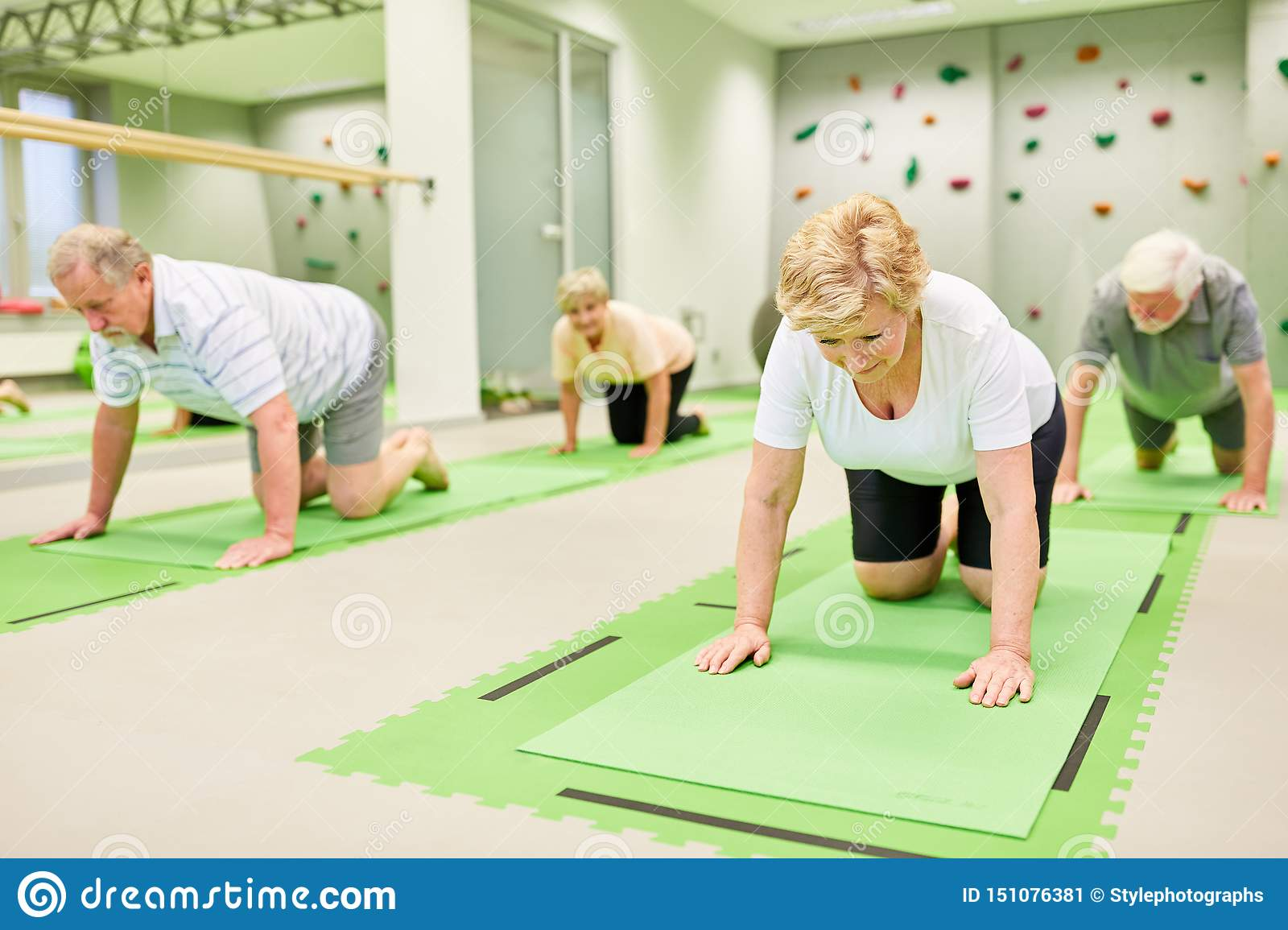 Group of seniors at a physiotherapy exercise