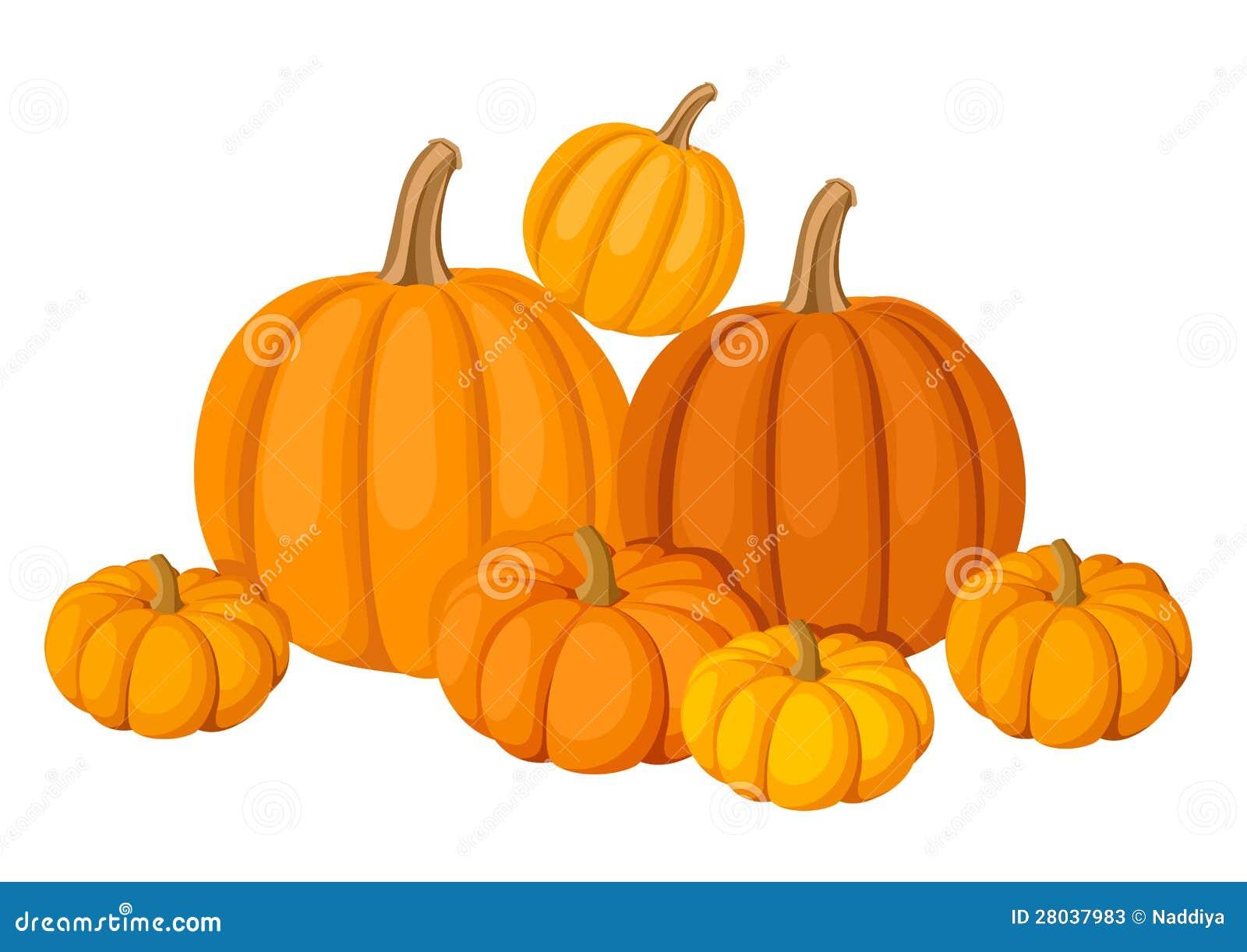 tourism business plan in bangladesh what do pumpkins