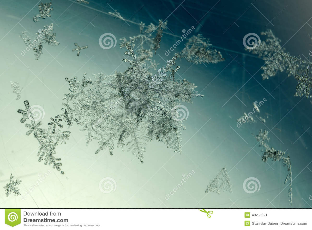 Group of snowflakes detail