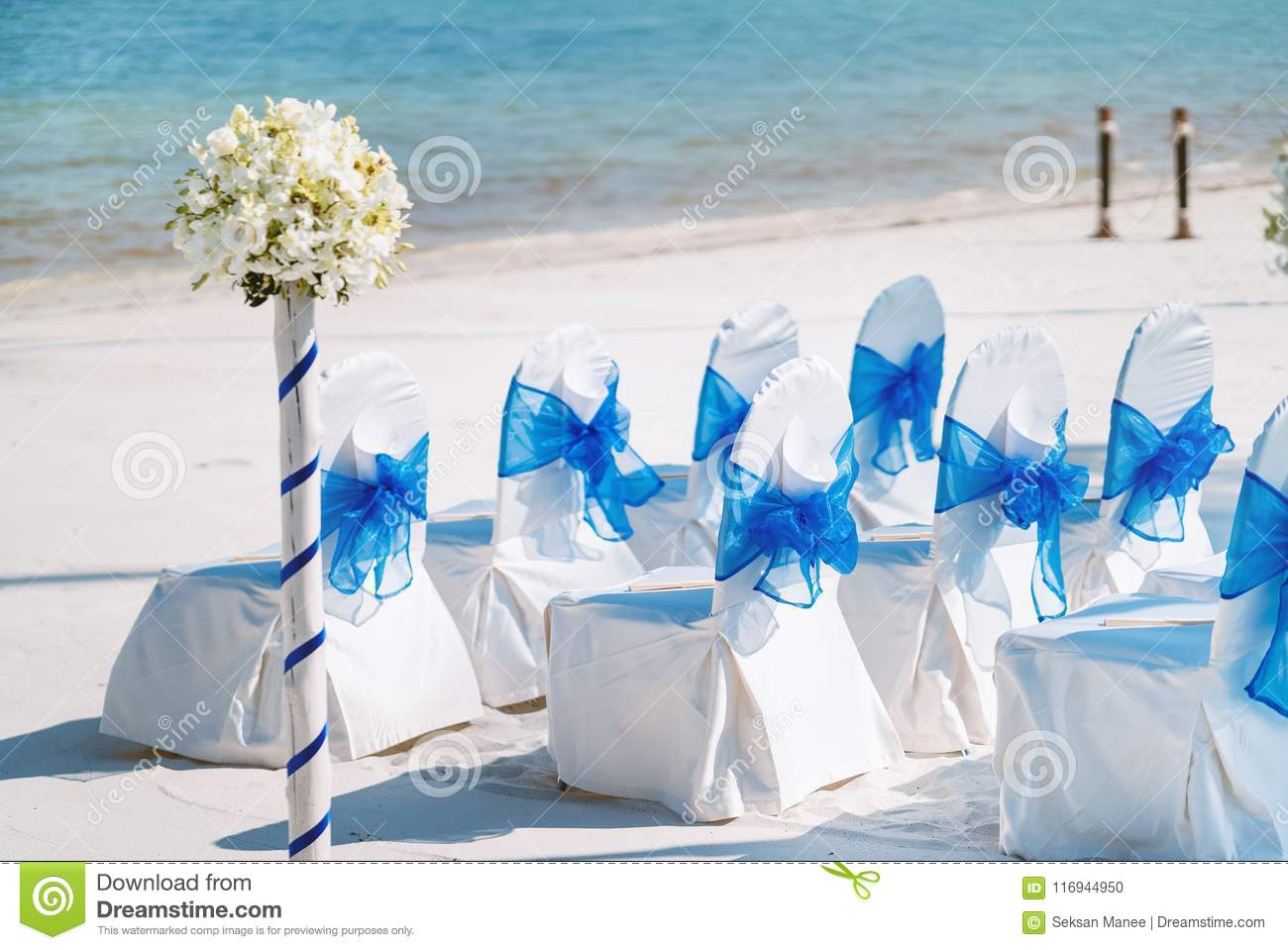 A Group Of White Spandex Chairs Cover With Blue Organza Sash For Beach Wedding Venue Setup Stock Photo Image Of Celebration Blue 116944950