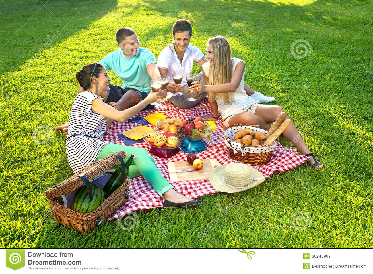 Friends Having A Picnic Royalty Free Stock Images Image 30245809