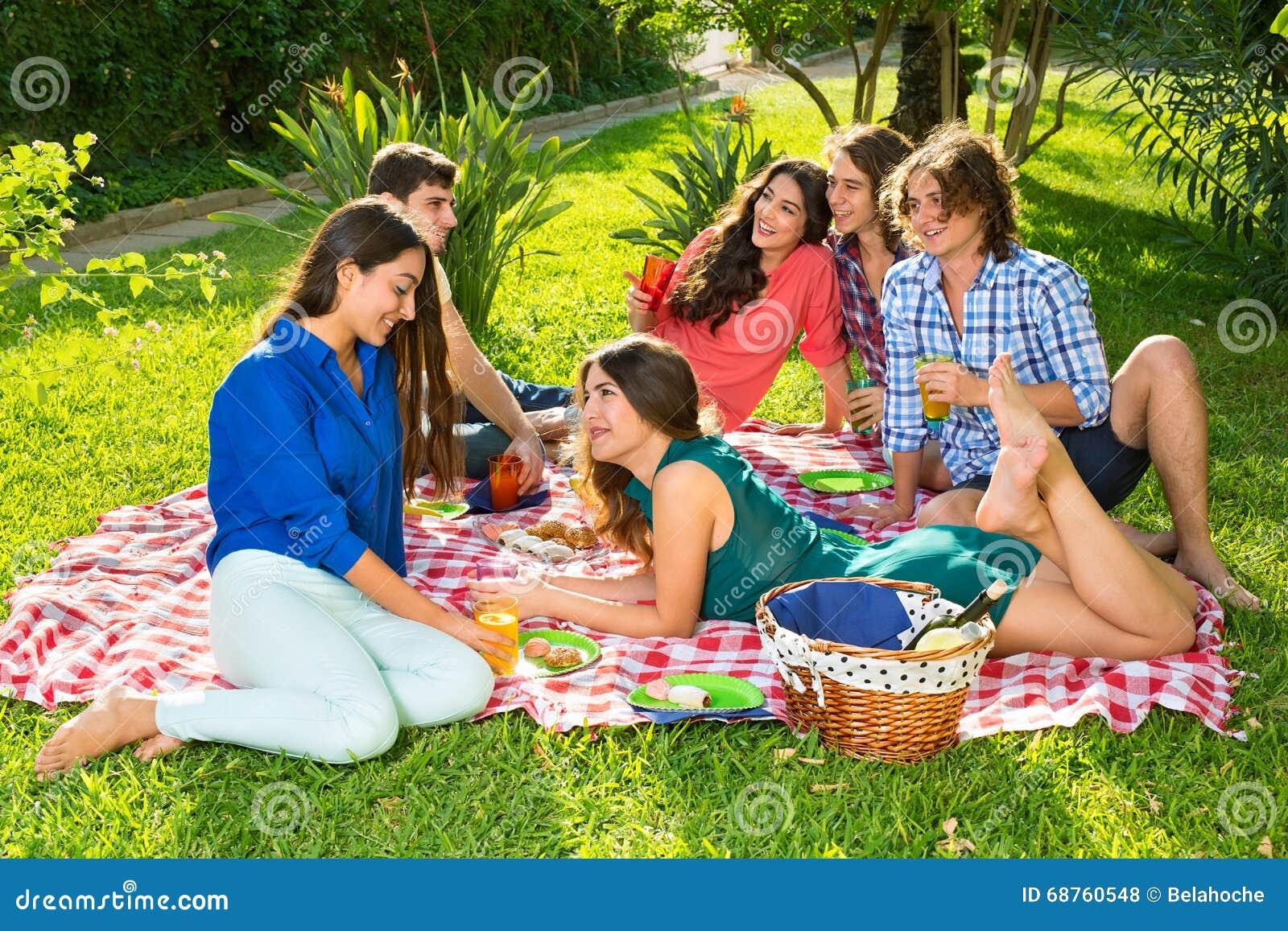 groupe d 39 amis ayant le pique nique un jour ensoleill photo stock image du tendu couples. Black Bedroom Furniture Sets. Home Design Ideas