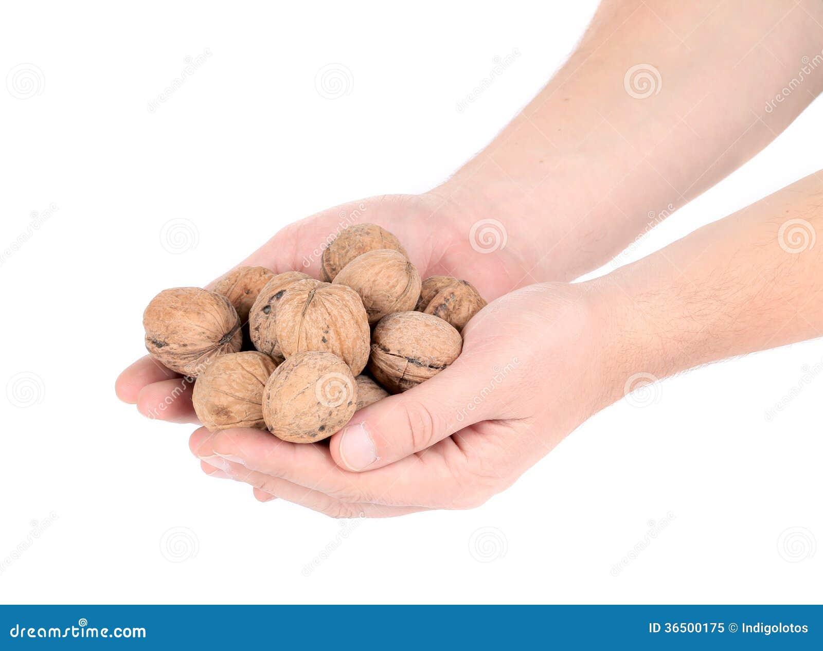 Groupe de noix dans des mains.