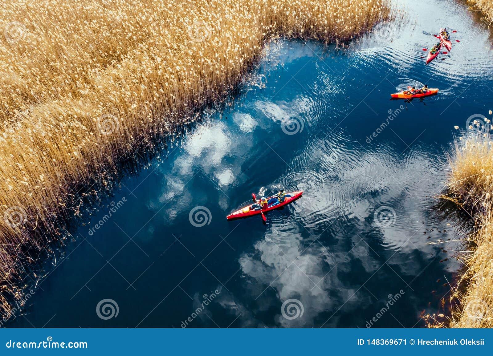 Groupe de personnes dans des kayaks parmi des roseaux sur la rivi?re d automne