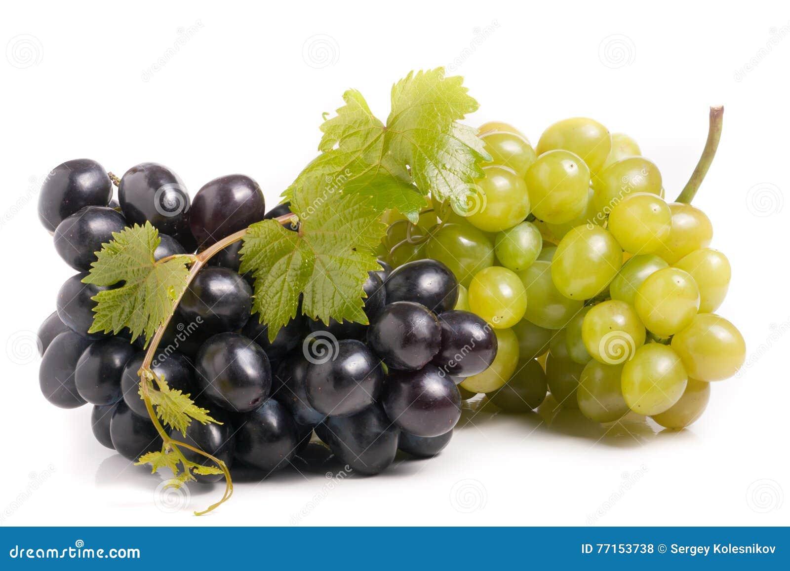 Groupe de raisin vert et bleu avec des feuilles d isolement sur le fond blanc