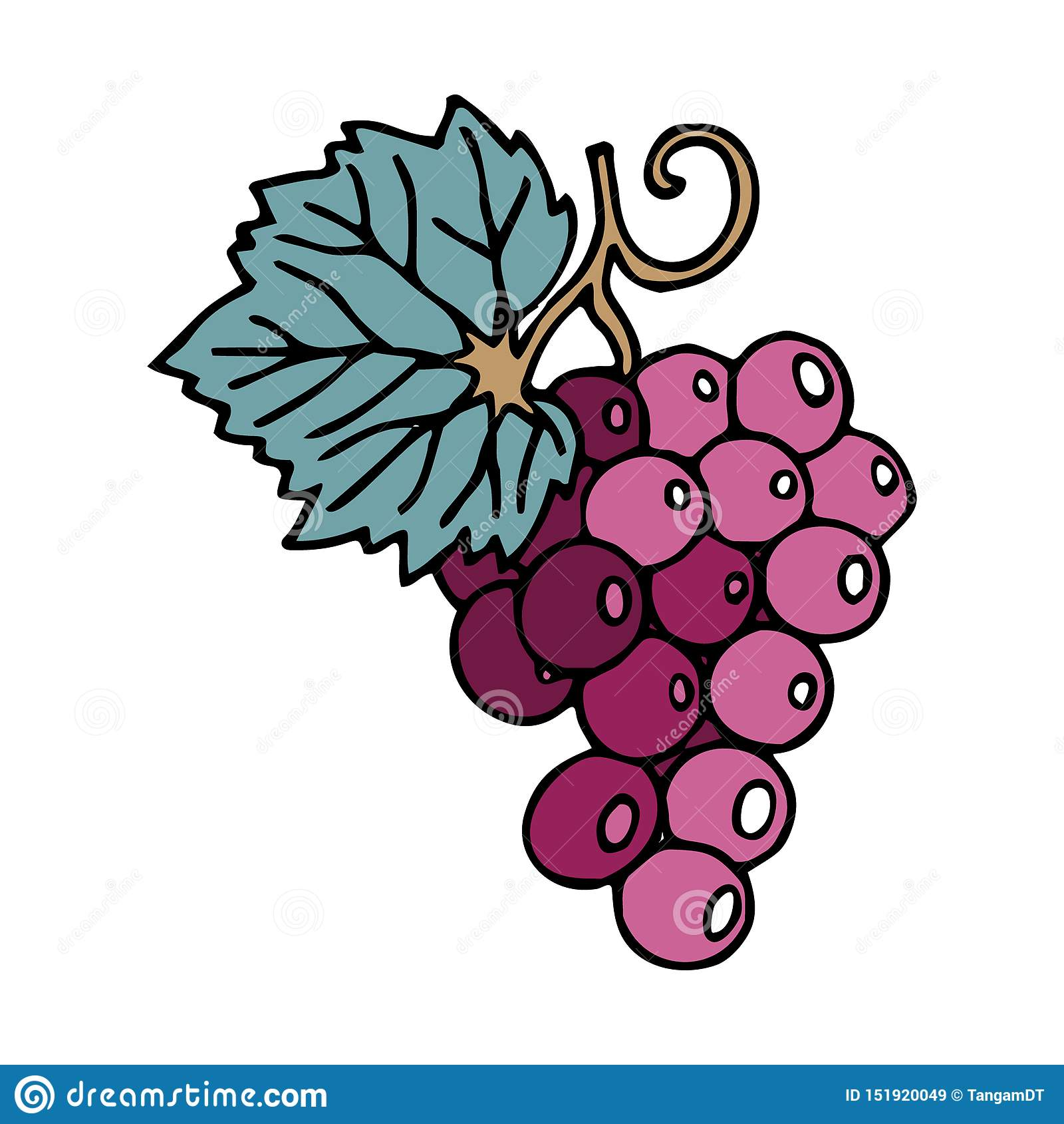 Groupe de raisins dans le style de griffonnage avec la course