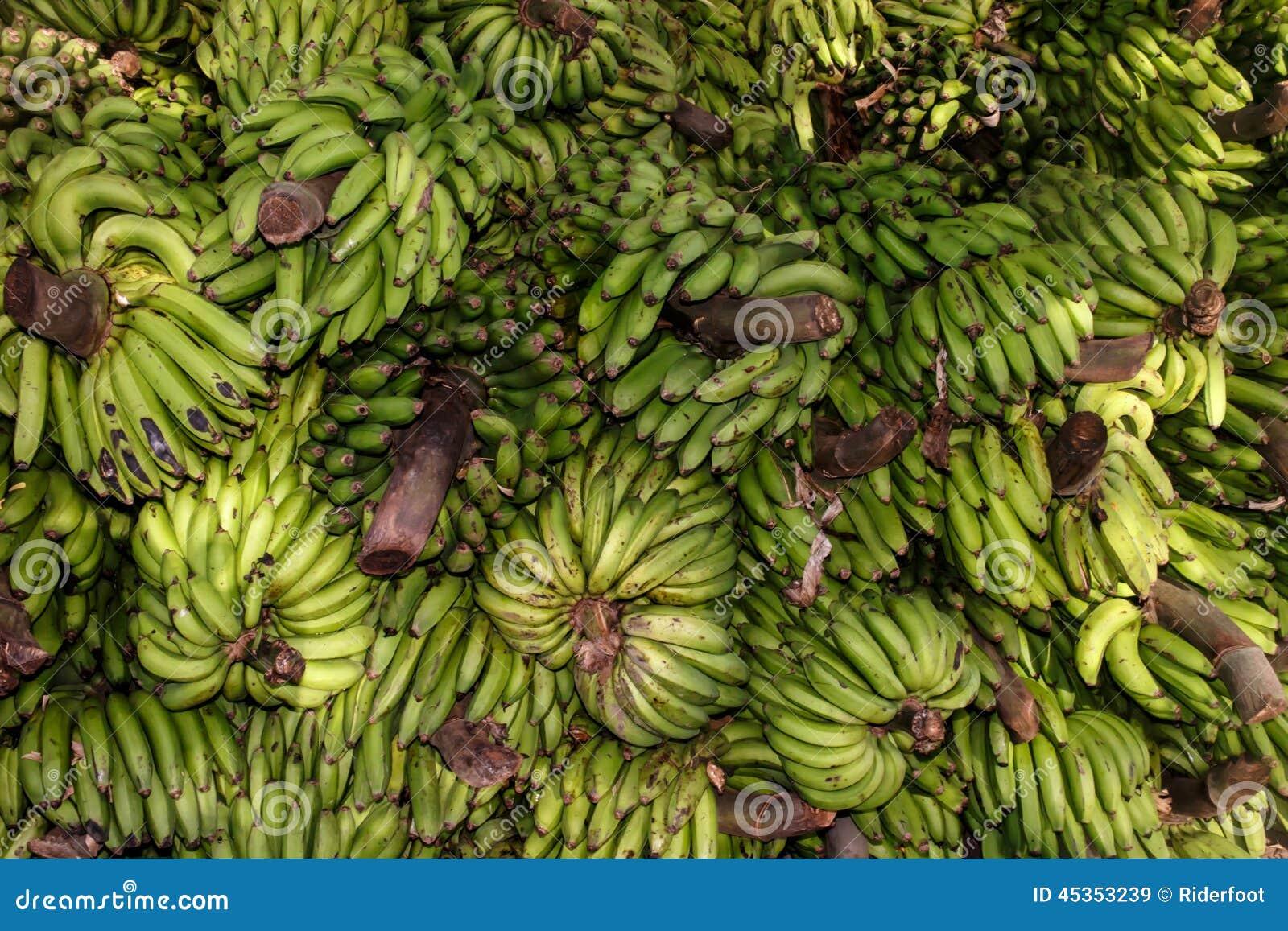 Groupe vert de banane