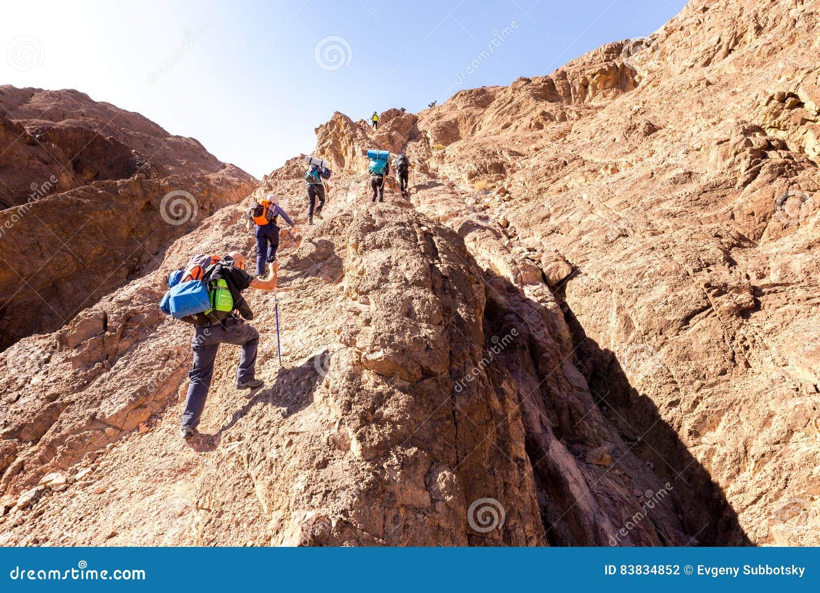 Groupez le mode de vie s élevant montant de traînée de montagne de désert de randonneurs
